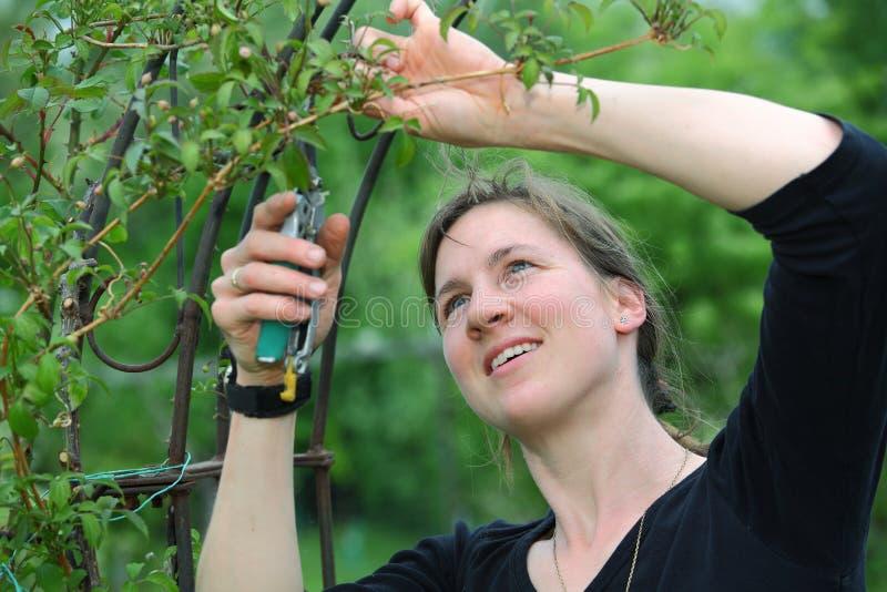 arbeta i trädgården kvinna royaltyfri fotografi