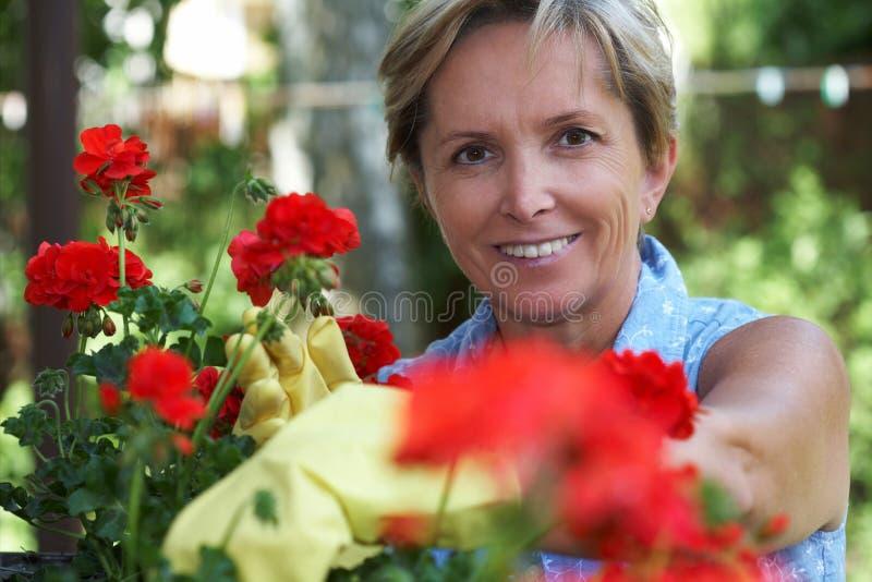 arbeta i trädgården kvinna royaltyfria foton