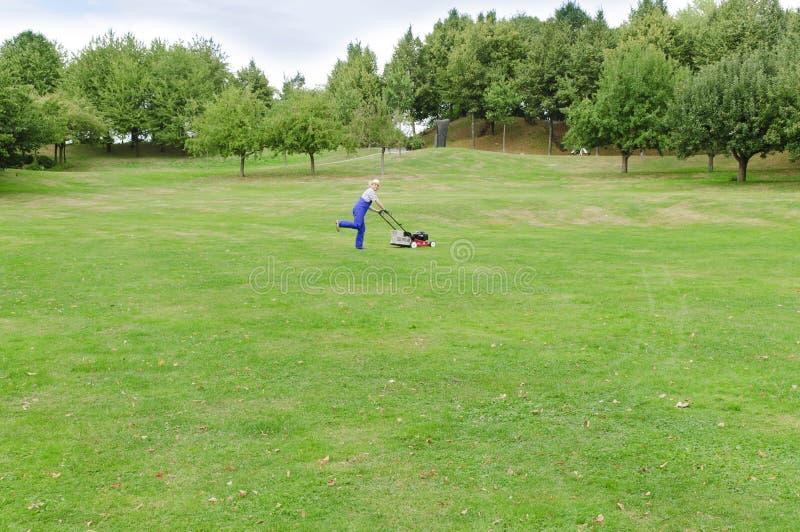Arbeta i trädgården man som mejar gräsmattan fotografering för bildbyråer
