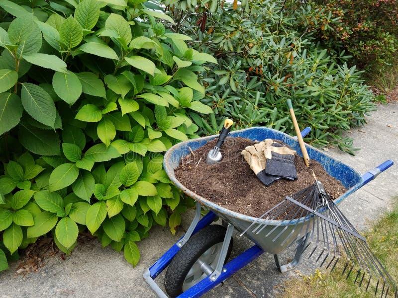 Arbeta i trädgården och gårdarbete - skottkärran och krattar royaltyfria bilder