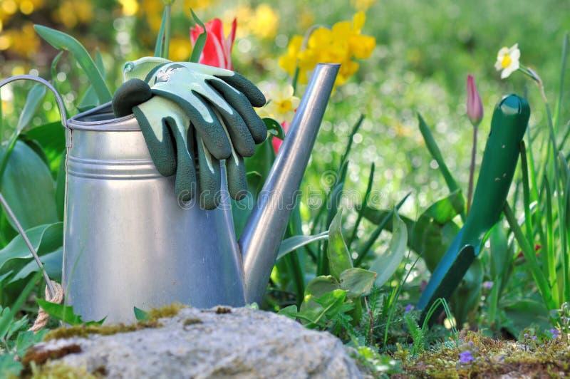Arbeta i trädgården på våren arkivbilder