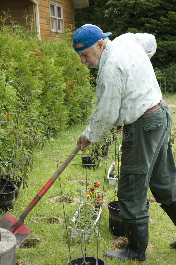 arbeta i trädgården pensionär fotografering för bildbyråer