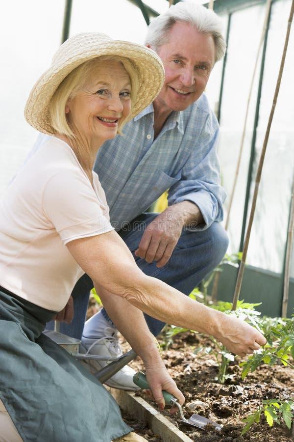 arbeta i trädgården pensionär för par arkivfoto