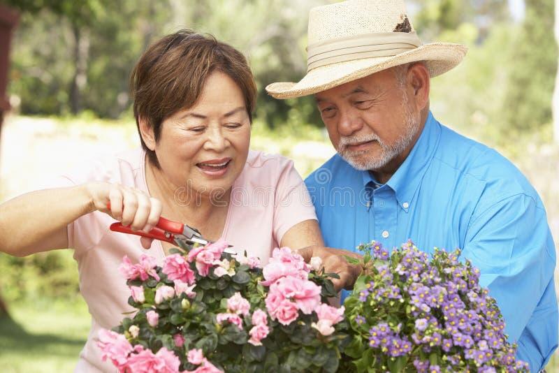 arbeta i trädgården pensionär för par tillsammans arkivfoto
