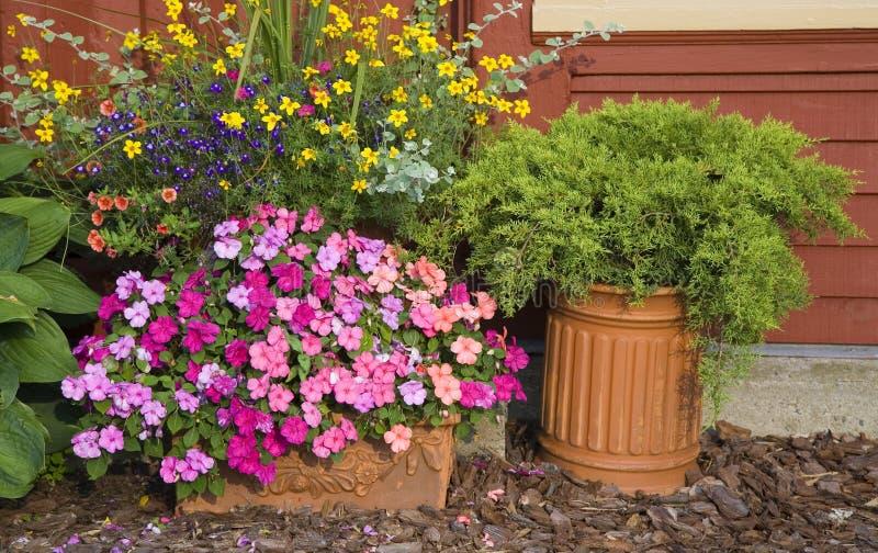 arbeta i trädgården planters royaltyfria bilder