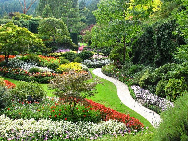 arbeta i trädgården sjunken sikt royaltyfria bilder