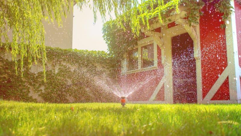 Arbeta i trädgården som bevattnar växter med trädgårdslangen royaltyfria foton