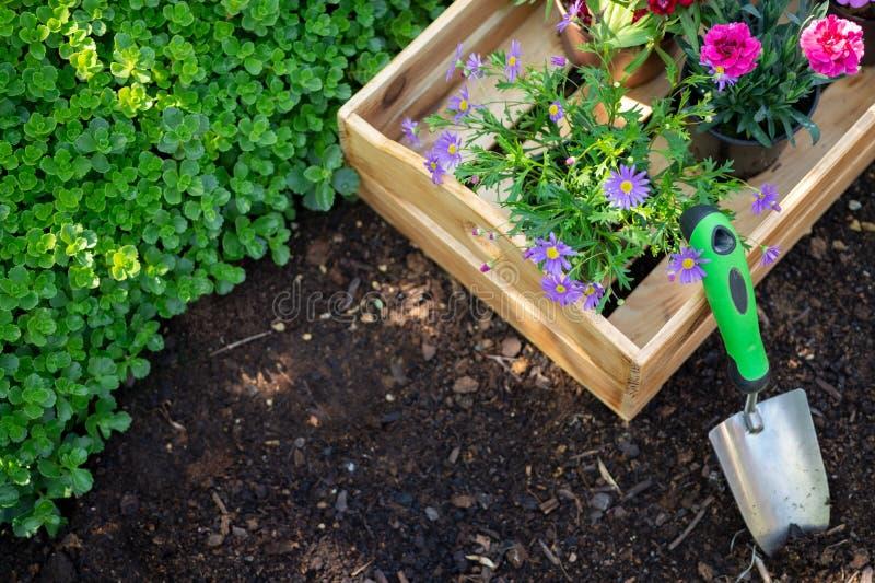 Arbeta i trädgården Spjällåda mycket av blomkrukor och trädgårds- hjälpmedel som är klara för att plantera i Sunny Garden arbeta  arkivfoton