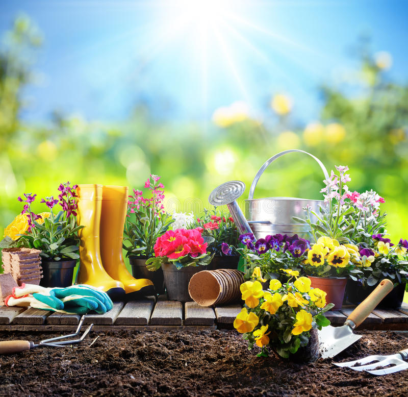 Arbeta i trädgården - utrustning för trädgårdsmästare royaltyfri bild