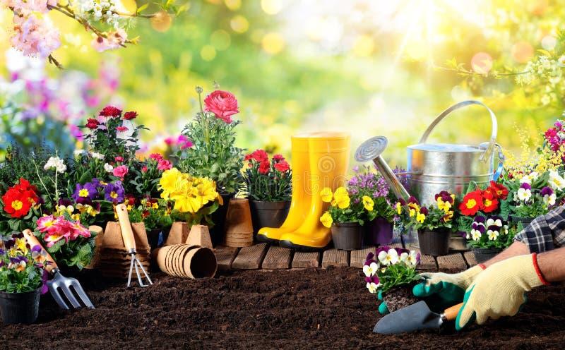 Arbeta i trädgården - utrustning för trädgårdsmästaren And Flower Pots arkivbilder