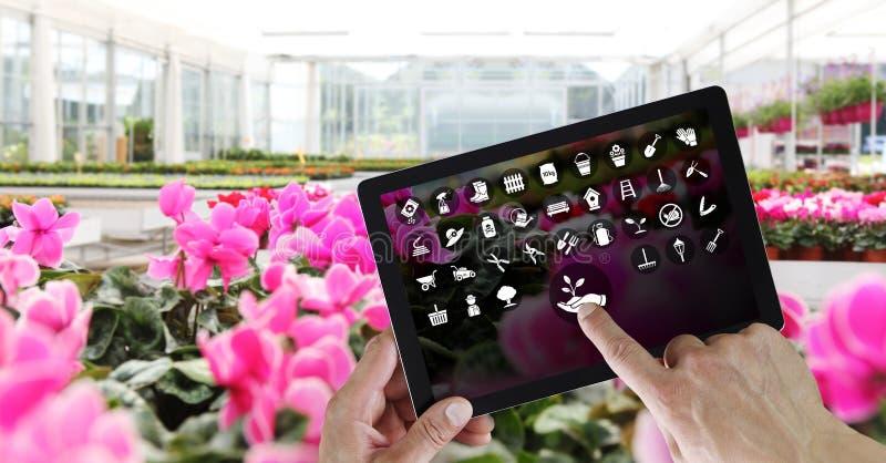 Arbeta i trädgården utrustninge-kommers begrepp, online-shopping på den digitala minnestavlan, hand som pekar och pekskärm med vi royaltyfri bild