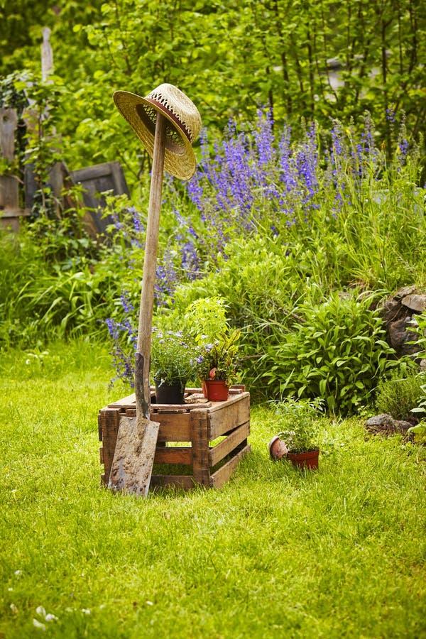 Arbeta i trädgården utrustningträaskträdgården royaltyfri foto
