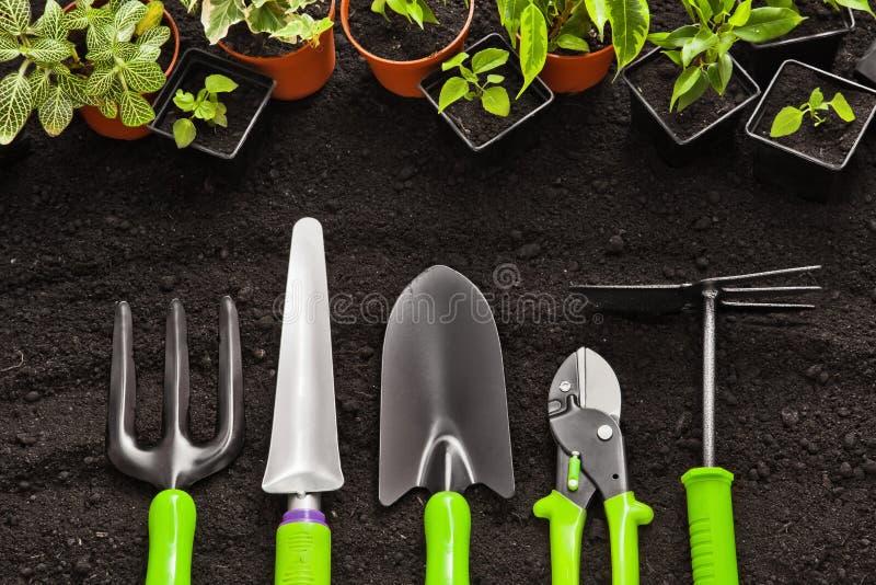 arbeta i trädgården växthjälpmedel arkivbilder