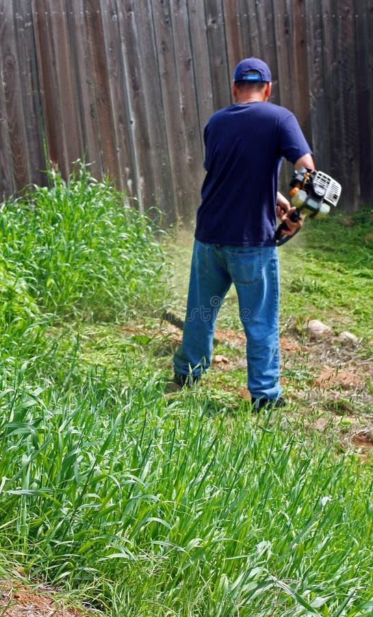 arbeta i trädgården weedkok stryk arkivfoton