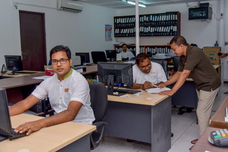 Arbetare av räkenskapavdelningen som gör deras jobb arkivbilder