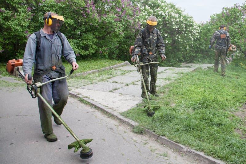 Arbetare i den M.M. Gryshko National Botanical trädgården (Kiev, Ukraina). arkivfoto