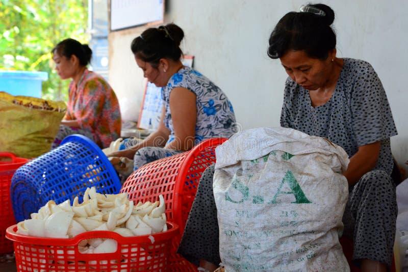 Arbetare i kokosnötgodisfabrik Ben Tre Mekong deltaregion vietnam royaltyfri foto