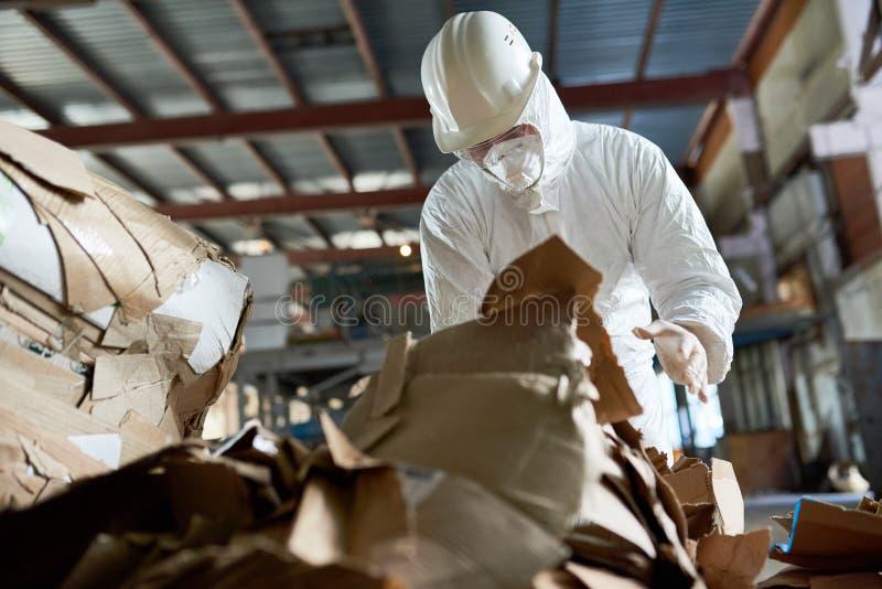 Arbetare i sorteringpapp för skyddande dräkt royaltyfri fotografi