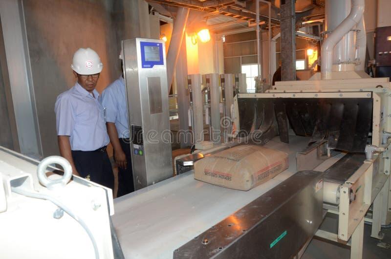 Arbetare ordnar pappers- påsar för fyllningmaterial arkivfoto