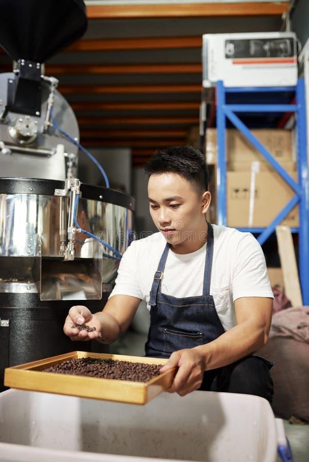 Arbetare p? kaffefabriken royaltyfria bilder
