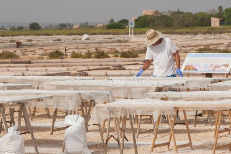 Arbetare på saltern