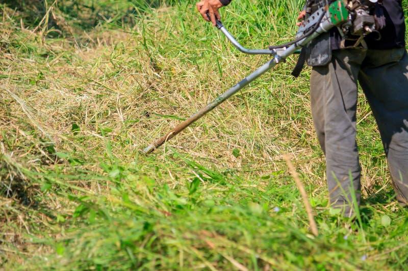 Arbetare som mejar gräset arkivfoto