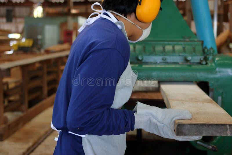 Arbetaren arbetar med att hyvla av den wood maskinen Han bär säkerhetsutrustning i fabrik isolated rear view white fotografering för bildbyråer