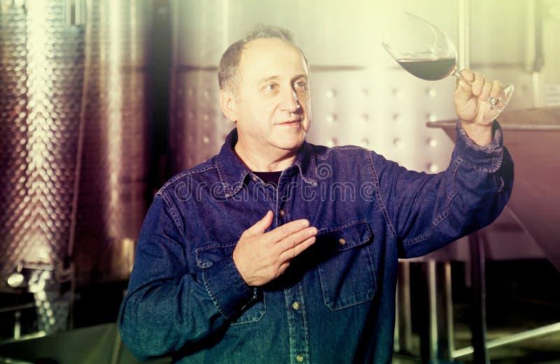 Arbetaren av vinodlingkostnader med exponeringsglas av rött vin nära tankar arkivbild