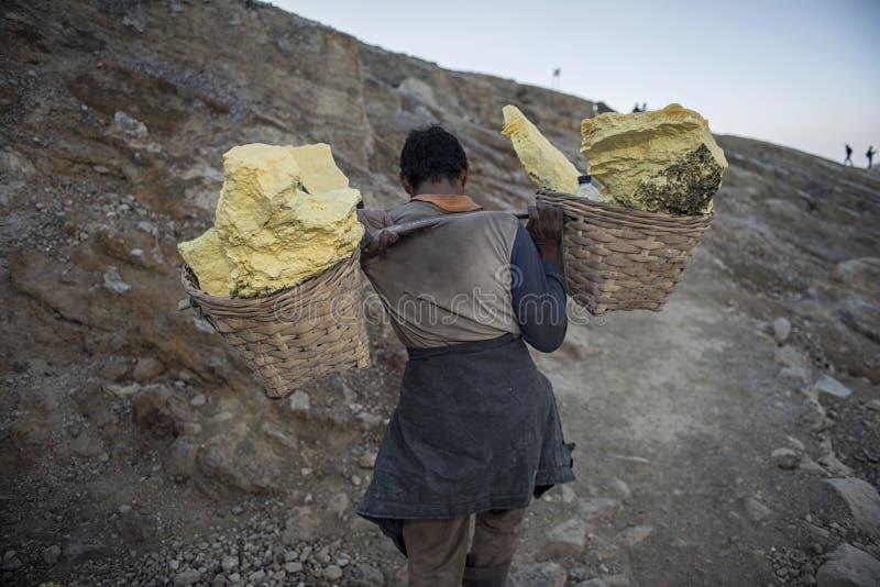 Arbetaren bär svavel inom den Ijen krater i den Ijen vulkan, Indonesien arkivbilder