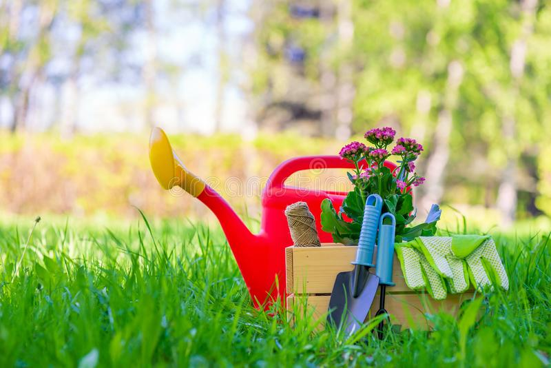 arbete för vår för objektbegreppsfoto i trädgårdslutet upp arkivfoto