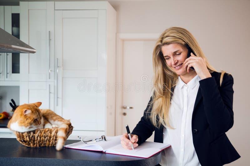 Arbete och katt för affärskvinna i korg arkivbilder