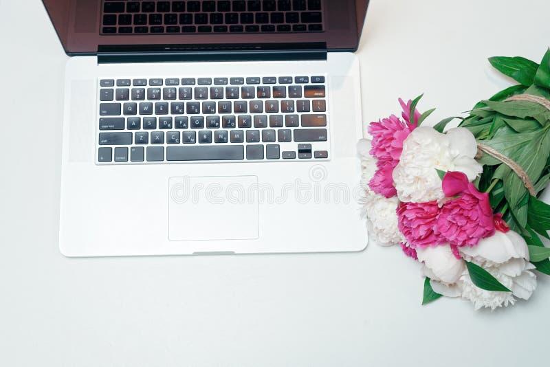 Arbetsplats med rosa vita pioner för bärbar dator royaltyfri foto