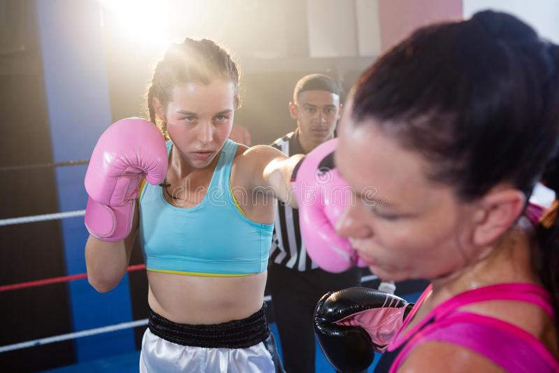 Arbitre mirando a los boxeadores de sexo femenino que luchan en ring de boxeo fotografía de archivo libre de regalías
