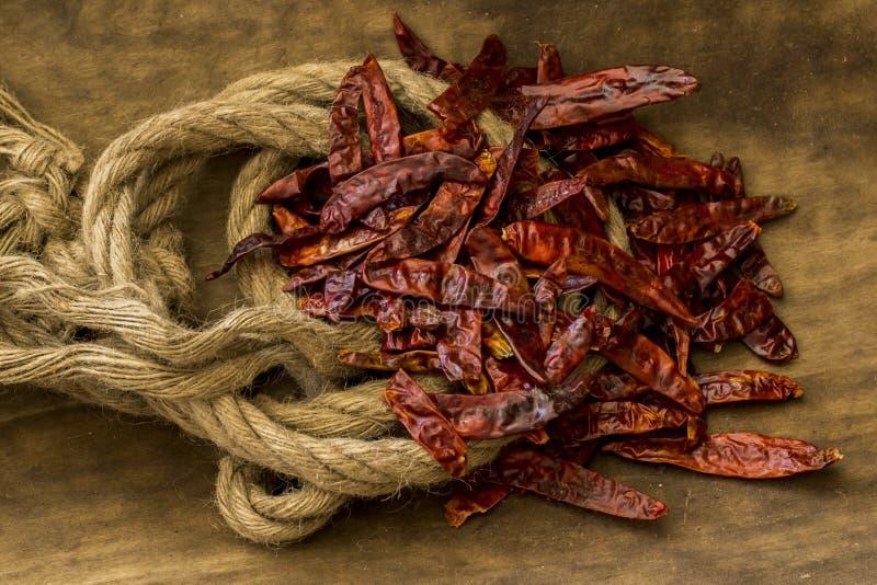arbol Чили de стоковое фото rf