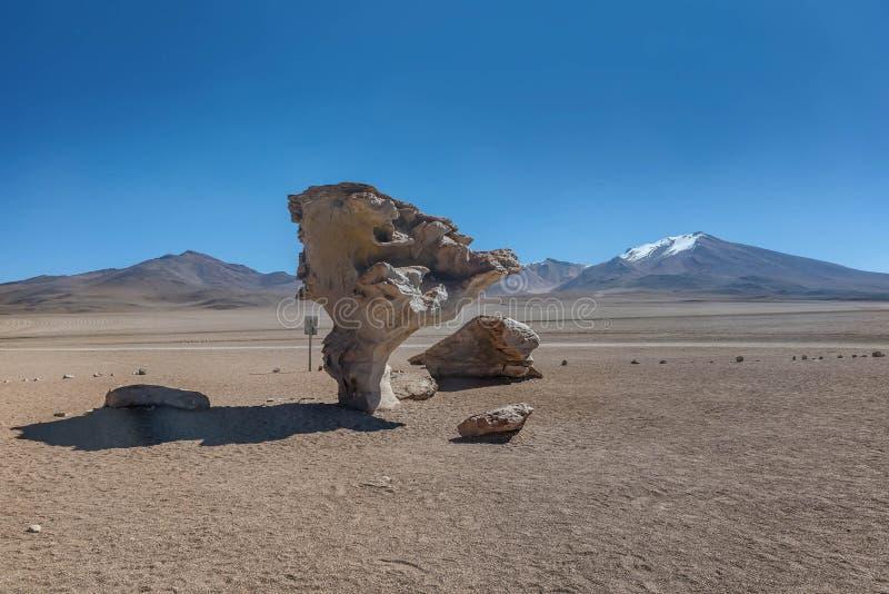 Arbol de彼德拉或石树, Altiplano,玻利维亚 免版税图库摄影
