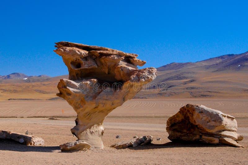 Arbol DE Piedra van de Boliviaanse woestijn stock afbeelding
