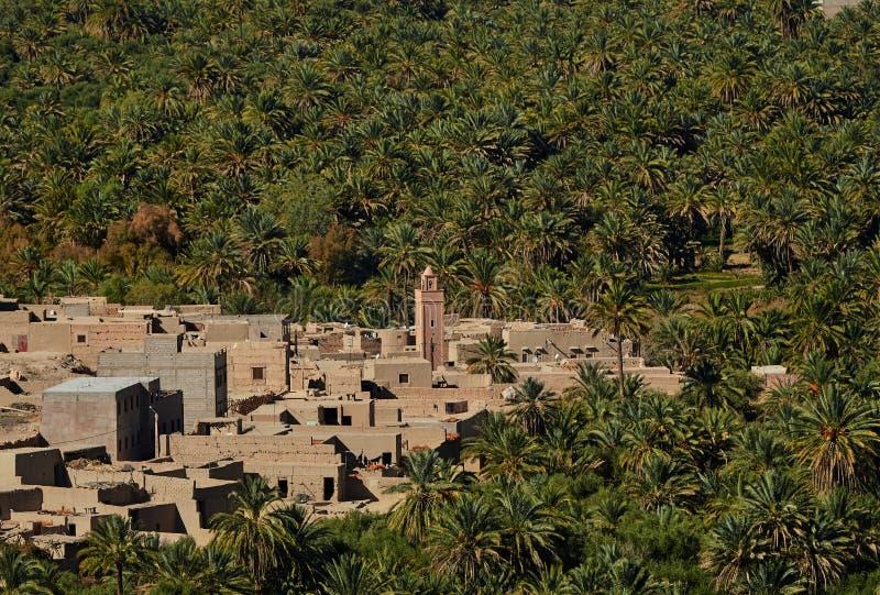Arboleda enorme de la palma en el valle de Ziz, Marruecos Silueta del hombre de negocios Cowering fotos de archivo