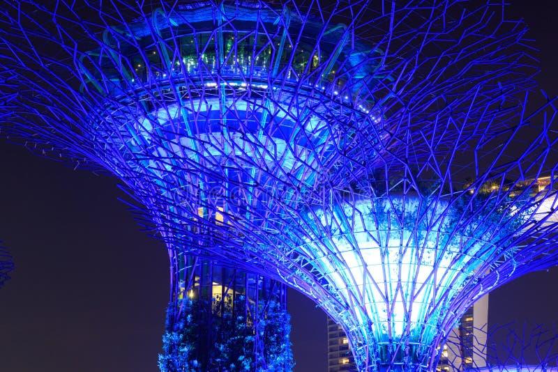 Arboleda y Marina Bay Sands de Supertree en la noche en jardines por la bahía fotografía de archivo libre de regalías