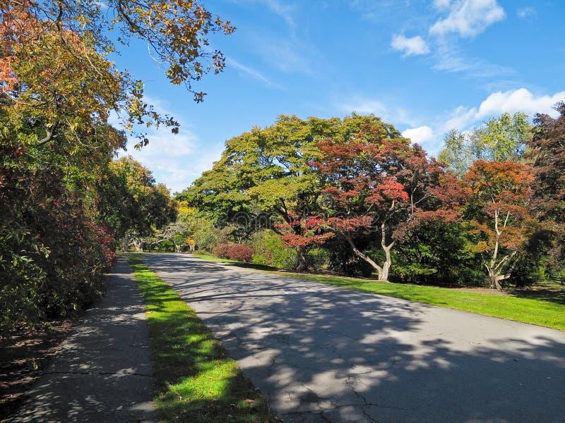 Arborétum d'Arnold, Boston image stock