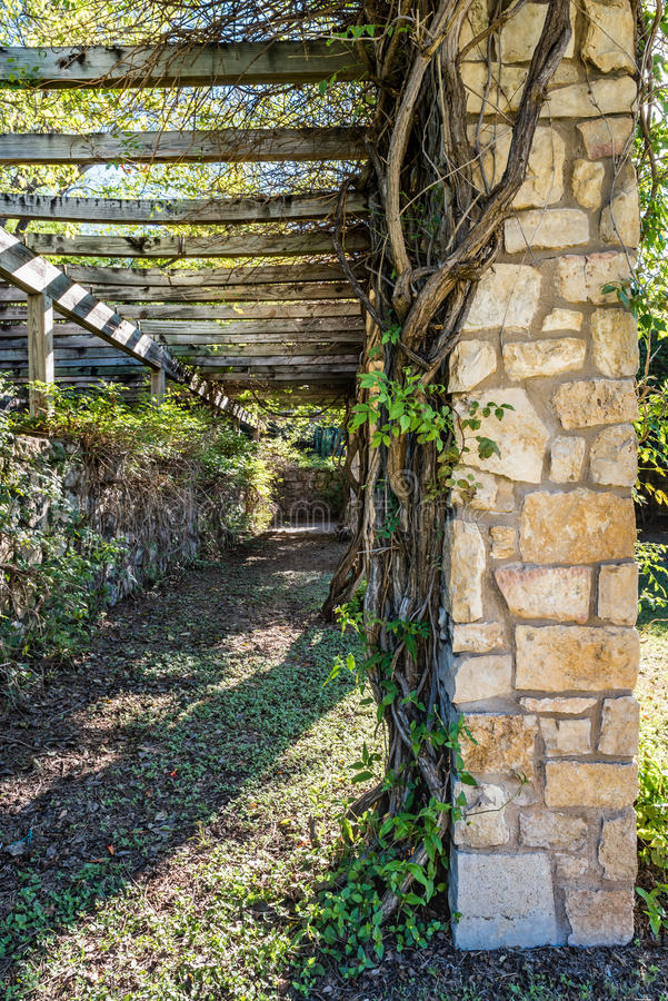 Arbor Covered Pathway with Vines. Along the top and the stone columns at the corners royalty free stock photo