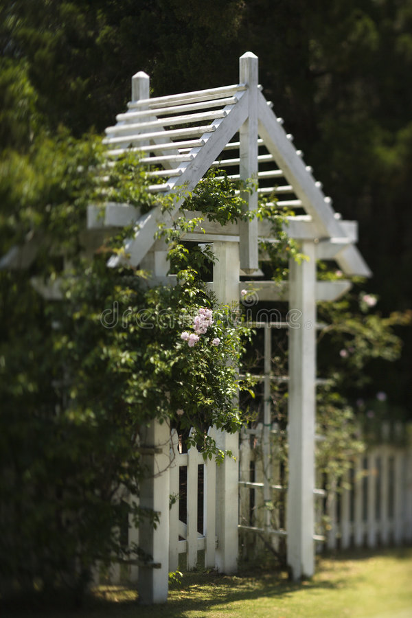 Arbor with rose bushes royalty free stock photos