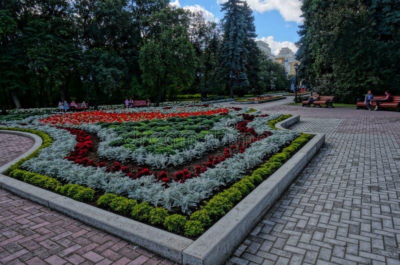 arboreta Ekaterinburg 2018 august miejsce mieć odpoczynek zdjęcie royalty free