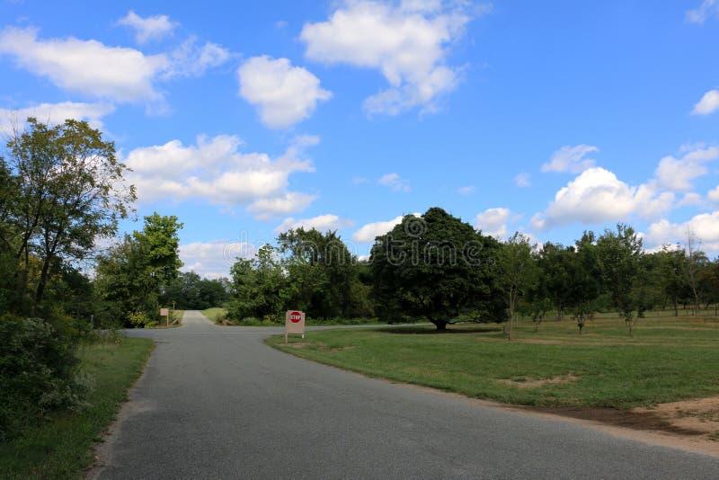 Arboreto nacional do Estados Unidos imagens de stock royalty free