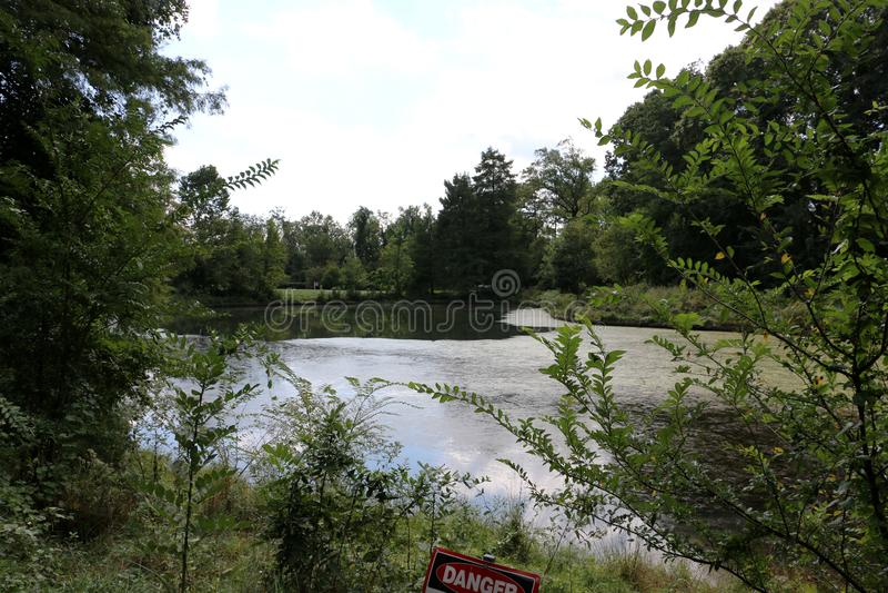 Arboreto nacional do Estados Unidos foto de stock royalty free