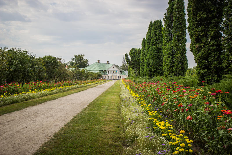 Arboreto viejo del parque de la primavera foto de archivo libre de regalías