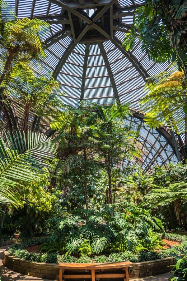 Arboreto y jardín botánico fotos de archivo libres de regalías