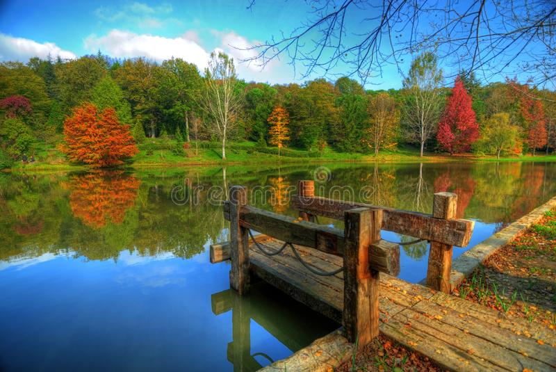 arboretum ataturk obrazy royalty free