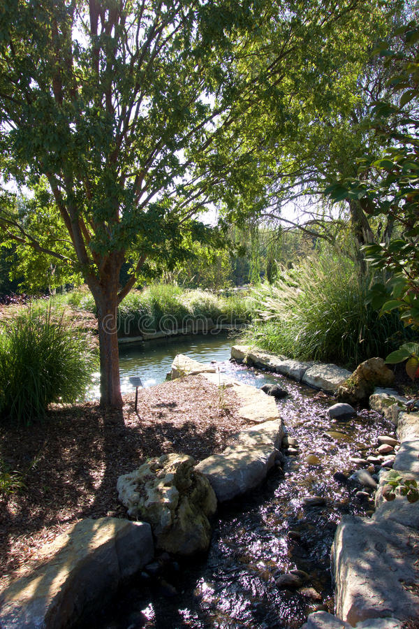 Arboretum Stream and Pond royalty free stock photography