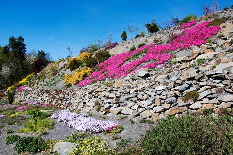 Arboretum w Paseka Sternberk, republika czech zdjęcia royalty free