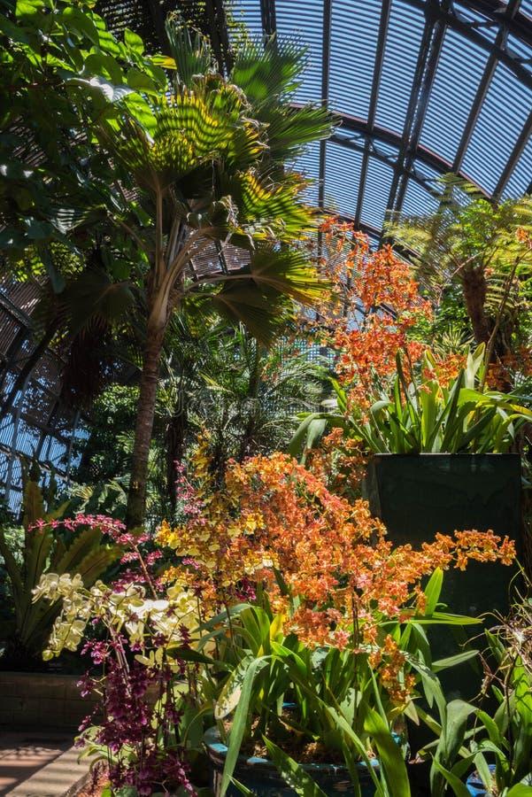 arboretumbotanisk trädgård royaltyfria bilder